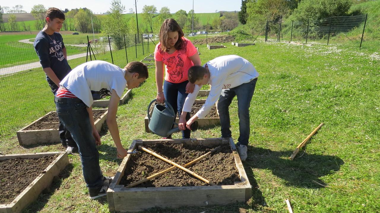 La nouvelle quipe de jardiniers se met au travail for Jardin de jardiniers