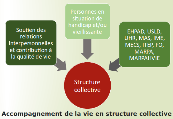Dipl me d tat accompagnant ducatif et social cpfp la for Diplome restauration collective